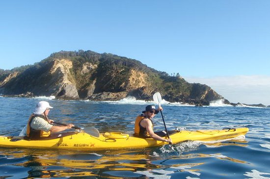 Full Day Sea Kayak Tour from Batemans...