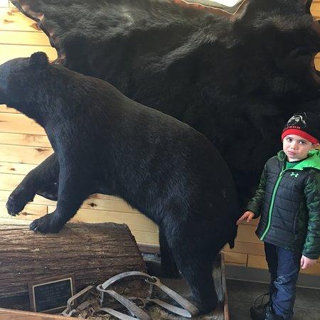 Bear Trap Inn: photo0.jpg