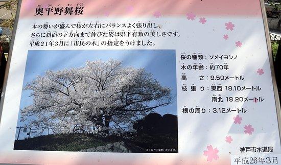 โกเบ, ญี่ปุ่น: 奥平野舞桜の説明プレート