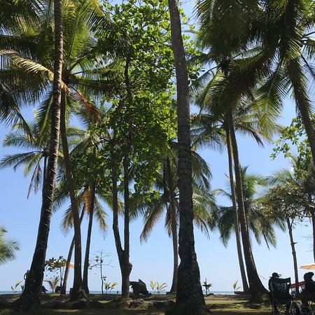 Clandestino Beach Resort: photo2.jpg