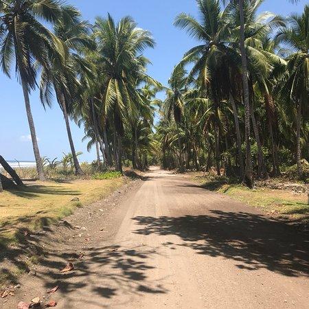 Clandestino Beach Resort: photo3.jpg