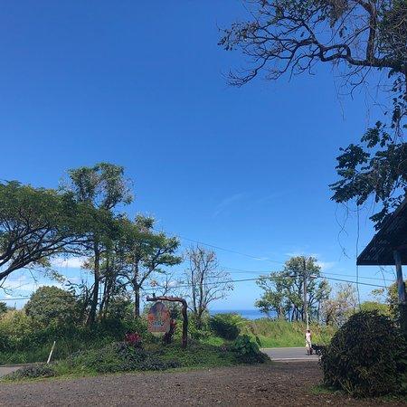 Foto de Coconut Glen's