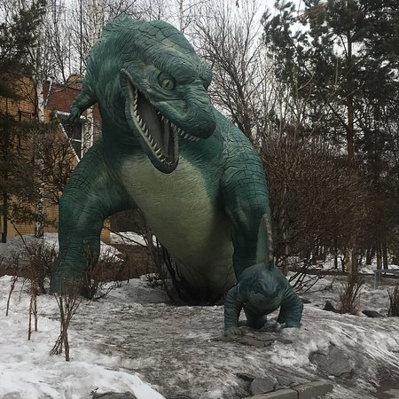 Novosibirsk Zoo: photo3.jpg