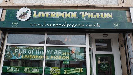 Liverpool Pigeon