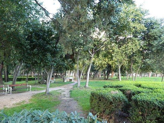 Vitturi Park