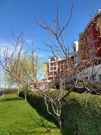 Aheloy, Bulgaria: Spring at Marina Cape