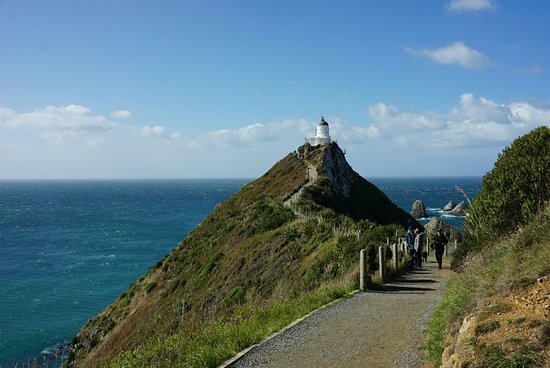 Nugget Point Lighthouse: DSC02938_large.jpg
