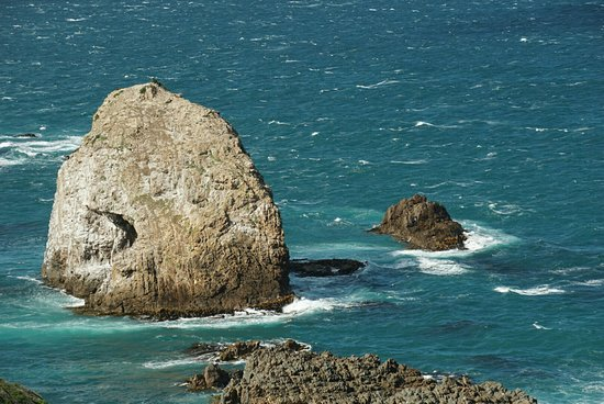 Nugget Point Lighthouse: DSC02970_large.jpg