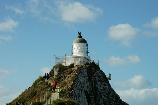 Nugget Point Lighthouse: DSC02965_large.jpg