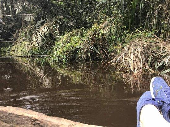 Nkolmetet, Cameroon: IMG-20180401-WA0006_large.jpg