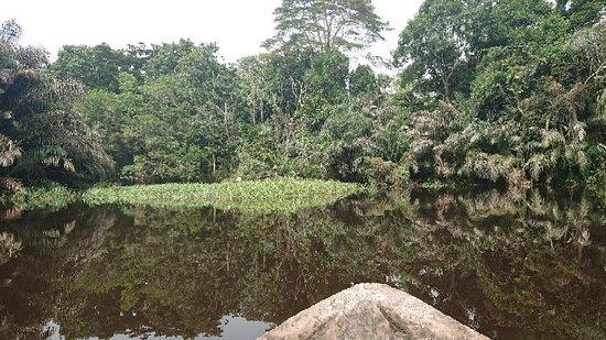 Nkolmetet, Cameroon: DSC_0087_large.jpg