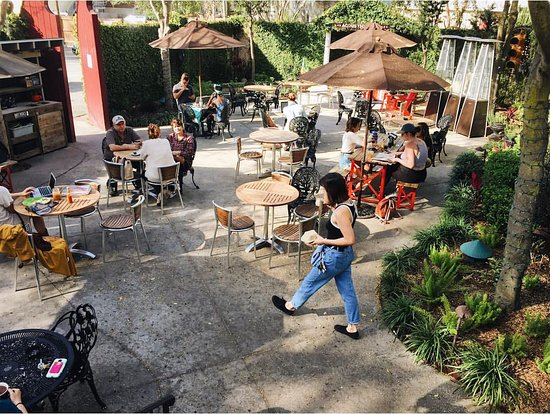 Foxy Loxy Cafe: Birds eye view of the Foxy courtyard