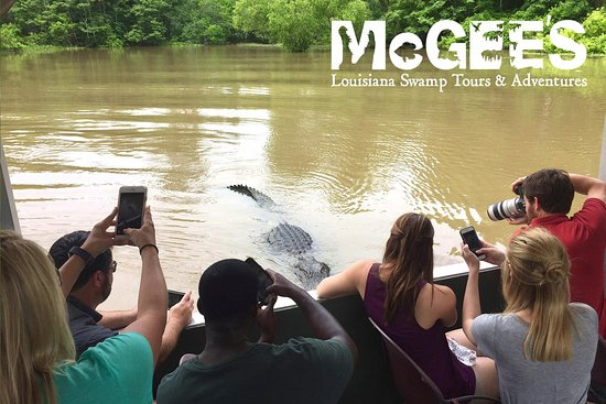 ‪McGee's Louisiana Swamp & Airboat Tours‬