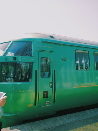 Limited Express Yufuin no Mori: How the train looks like