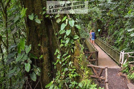 La Choza Inn Hostel: La Fortuna- waterfall, do it on your own