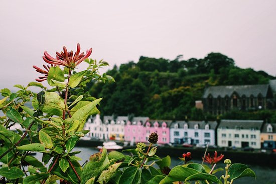 The famous coastal town of Portree, Isle of Skye  - Picture of