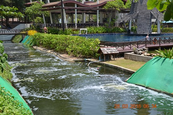 Kappa Club Thai Beach Resort  Tripadvisor