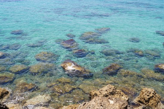 Paphos Municipal Beach: Лазурная водичка