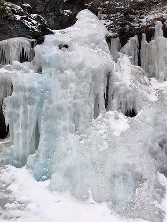 Columbia Falls, MT: Fascinating