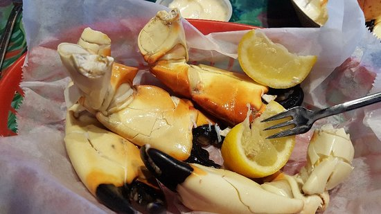 Frenchy's Saltwater Cafe : Stone crab season runs another month.  These are perfect. $19.95 a pound today😁