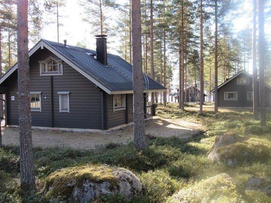 Kivijarvi, Finland: Mökki