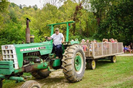 Wagon Ride Picture Of Gorman Heritage Farm Evendale Tripadvisor