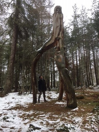 Frank Bruce Sculpture Trail 사진