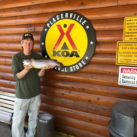 Shingle Springs, Kalifornien: In Mid April the pond is stocked with approx 500lbs of trout. KOA License Required