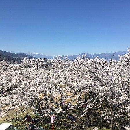 Oboshi Park