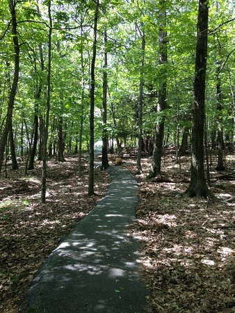 Wilton, NY: path to the overlook