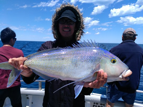 Marion Bay, Australia: Reef Encounters Fishing Charters Blue Morwong
