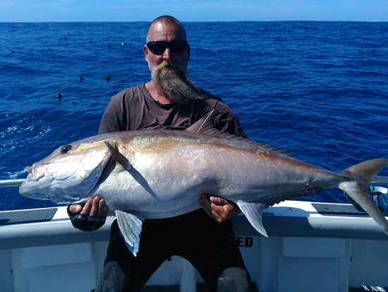 Marion Bay, Australia: Reef Encounters Fishing Charters Samson