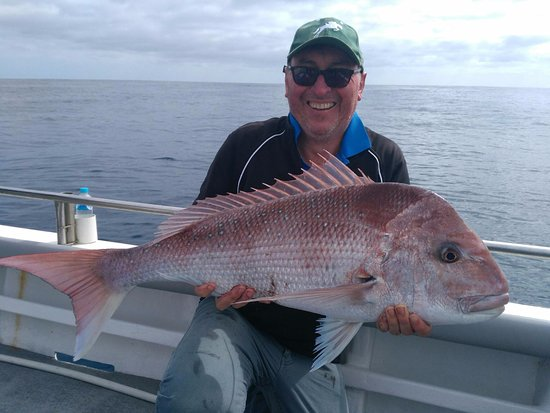 Reef Encounters Fishing Charters Snapper