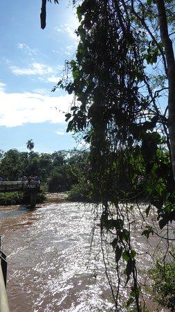 Caracol Internacional Viajes y Turismo (Puerto Iguazu