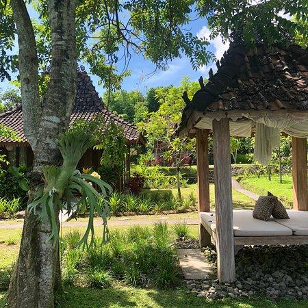 Expat Living in Yogyakarta