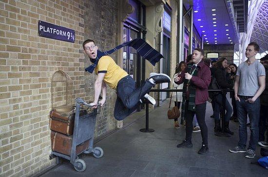ロンドン:ハリー・ポッタープライベート・ファミリー&キッズウォーキングツアー