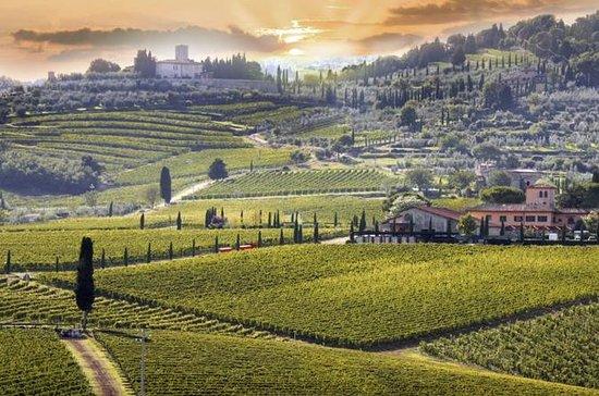 Tour del vino Chianti con Siena...