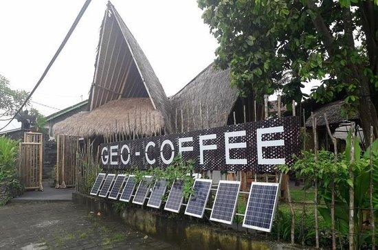 Fine Kaffetest & Kuta Shopping