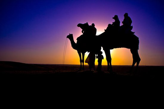 Sunset Camel Ride en Agadir con...