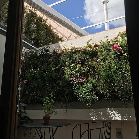 Halo Boutique Hotel: Vertical Garden