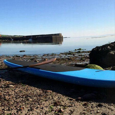 Stonehaven, UK: The calm waters of the harbour for learning