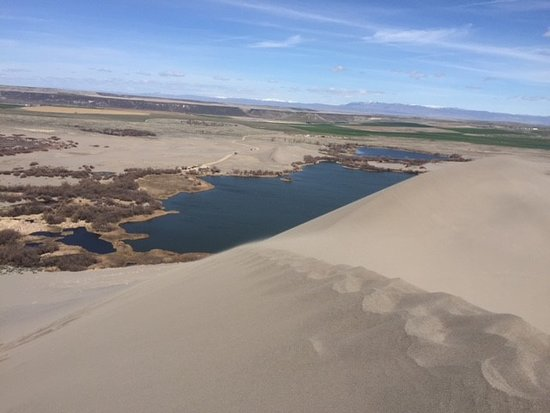 Bruneau, ID: View from the top of the big dune