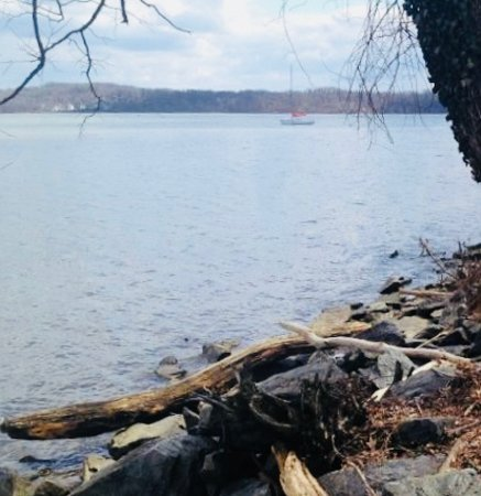 ‪‪Fairfax Station‬, فيرجينيا: View of the lake‬