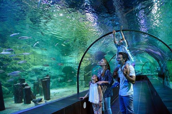 ViaSea Theme Park