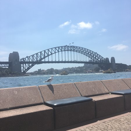 My favourite view in Sydney!