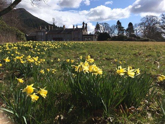 Keswick, UK: Springtime