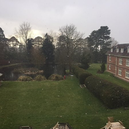 Albrighton, UK: photo1.jpg