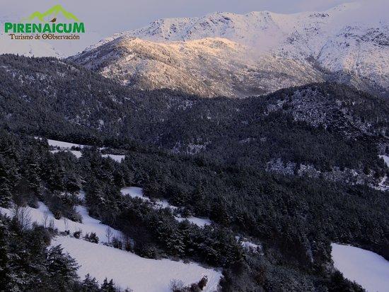 El valle de Barravés donde esta ubicado Montanuy. Pirineo central