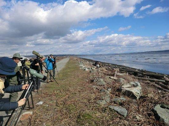 Surrey, Canadá: 野鳥の観察にも適している