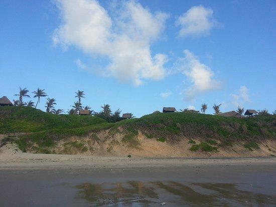 Bonito Bay Resmi